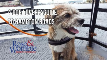 A Dog Lover's Guide to Hampton Roads